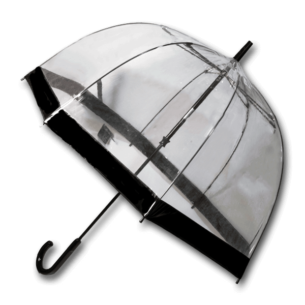 Fulton Birdcage Stick Umbrella