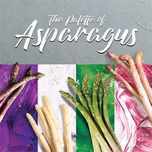 The Palette of Asparagus