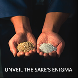 Unveil the Sake's Enigma
